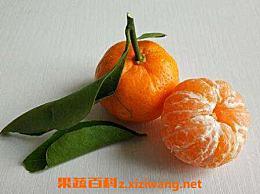 芦柑和橘子的区别 芦柑的功效和作用