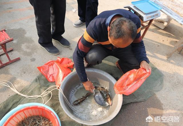 在农村集市买鱼,自己拿鱼回家做,鱼贩为啥就会不卖了?