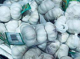 黑蒜的价格多少钱一斤