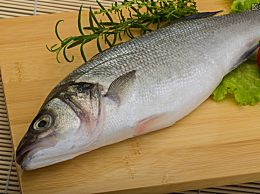 永辉三种鱼药物超标