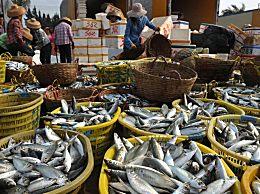 什么海鱼好吃又不贵