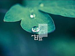雨水节气养生食谱