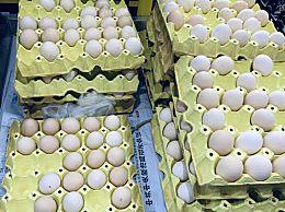 今日鸡蛋多少钱一斤