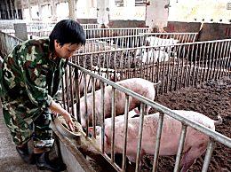 养猪场贷款如何申请