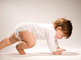 运动潜能要在三岁前开发?比情商智商重要