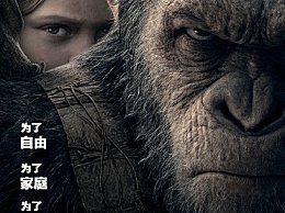 剑指奥斯卡 曝福斯预选送《猩球崛起3》竞争最佳影片