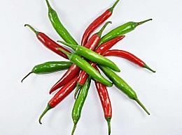 辣椒种植方法:辣椒喜温暖,怕霜冻、忌高温