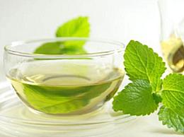 薄荷和蜂蜜可以一起喝吗    薄荷的功效作用有哪些