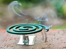 蚊香烟雾有毒?盘点 5 种常见的灭蚊方法