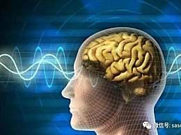 |周末一栏|科学家首次证实不宁腿综合征与大脑结构改变有关