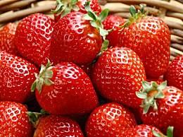 如何挑选草莓?挑选好的草莓如何清洗更保鲜