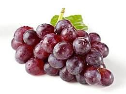 购买葡萄的注意事项