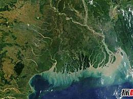 世界十大河流三角洲国家:第五大大米出口国 中国在名单上
