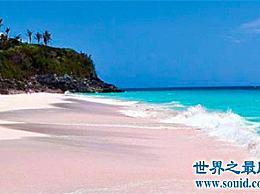 虽然粉色的沙滩很美 但女孩充满了爱心