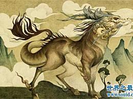 十大野兽 中国古代十大野兽及其代表意义