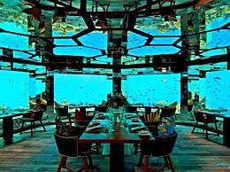 迪拜占据了世界十大最壮观的水下酒店的前三名!