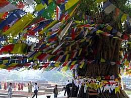 尼泊尔旅游景点排名免费旅游指南