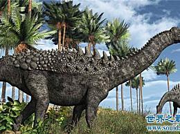 脆弱的双腔龙是巨大的 目前还不可能挖掘出完整的骨骼化石