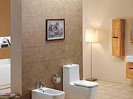 在国内卫生洁具品牌排行榜中 什么是最好的国内卫生洁具