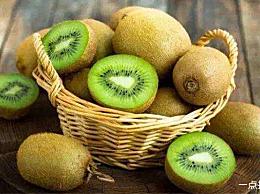 柠檬是世界上最酸的水果 只能排第四