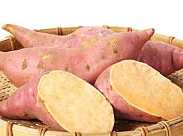 吃红薯会让你容易发胖吗?当你吃太多红薯时会发生什么