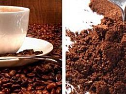牙买加蓝山咖啡 世界上最贵的咖啡(一杯不低于300元)
