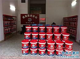 防水涂料十大品牌 哪个品牌更好?