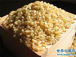 糙米的功效和功能介绍糙米的做法和禁忌