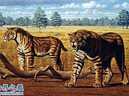 十种最有可能起死回生的史前野兽 你最期待谁?