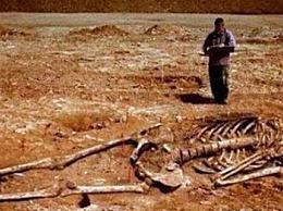 4米中国巨人仅剩骨头 目前 中国最高的人是鲍喜顺(身高2.36米)