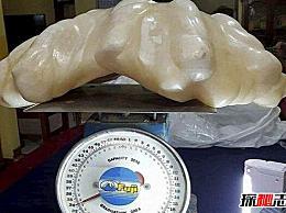 世界上最大的珍珠 它看起来很丑 已经在雪中隐藏了十年(价值6亿英