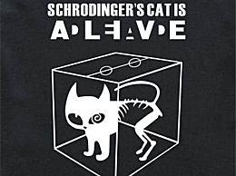 薛定谔的猫是什么意思?根据这个结论 平行宇宙被提出