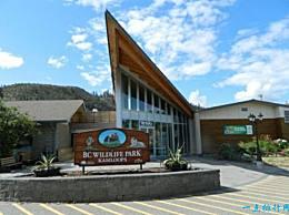 加拿大十大最著名的动物园既美丽又有趣