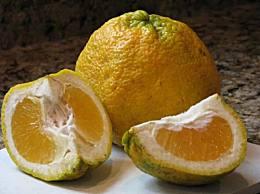 世界十大美味水果 许多人从未见过这些水果