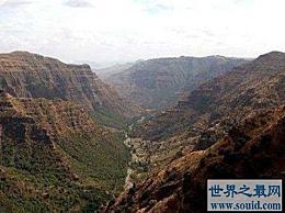 东非大裂谷是人类的起源 并且发现了这个家族成员的第一个化石