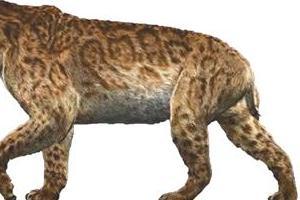 剑齿虎的奔跑速度是多少?剑齿虎重300公斤 高1米