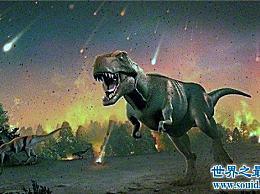 科学家确定恐龙灭绝的原因 彗星撞击地球并引起环境变化