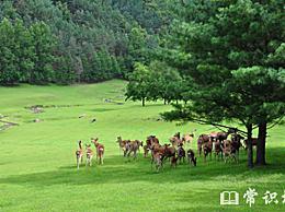 中国十大免费旅游目的地 免费旅游目的地排名