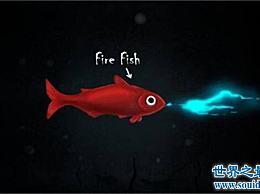 喷火鱼真的能喷火吗?事实上 它发出蓝光