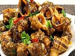海螺好吃吗?吃海螺应该注意哪些问题