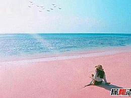 算上世界十大奇特海滩 艳遇圣地的粉色海滩令人窒息