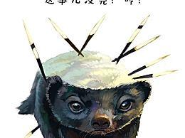 世界上最大胆的动物 平头蜜獾(敢吃任何东西)