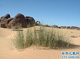 世界上最大的沙漠 美丽但令人窒息