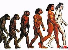 世界上最早的人类 南方猿类辉煌历史的转折点