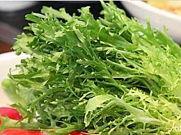 四种叶子带刺的野菜是什么