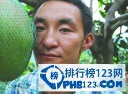 世界上最大的芒果重8公斤