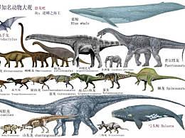 世界十大恐龙中最大的 最大的恐龙有80米长