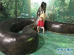 泰坦魔芋早在5000年前就已经灭绝了 它的重量可以超过1000公斤