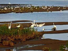 北戴河十大景点列出北戴河最值得去的地方