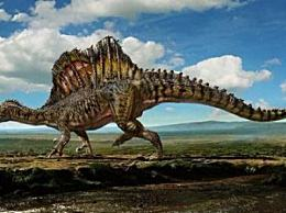 霸王龙 历史十大食肉恐龙 只能排第二